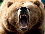 La femme ours