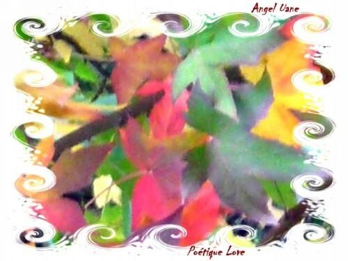 copi-Au-Vagues-de-feuilles.jpg