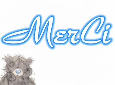 merci ours