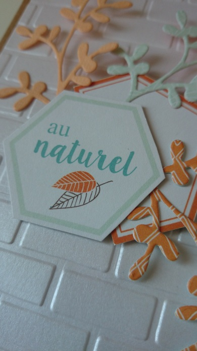 "Carte ""Au naturel""..."