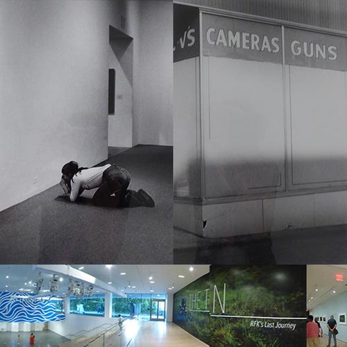 CAMERAS GUNS : BRING YOUR CAMERA. SHOOT. - 2