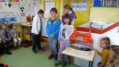 """Les élèves d'ULIS présente """"Miel"""" en PS/MS"""