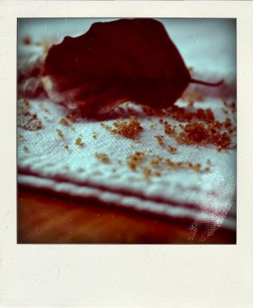 Yaourts aux épices et à la vergeoise façon crèmes brûlées