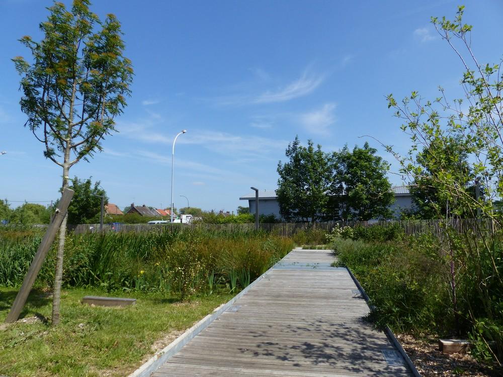 Un parc tout neuf !