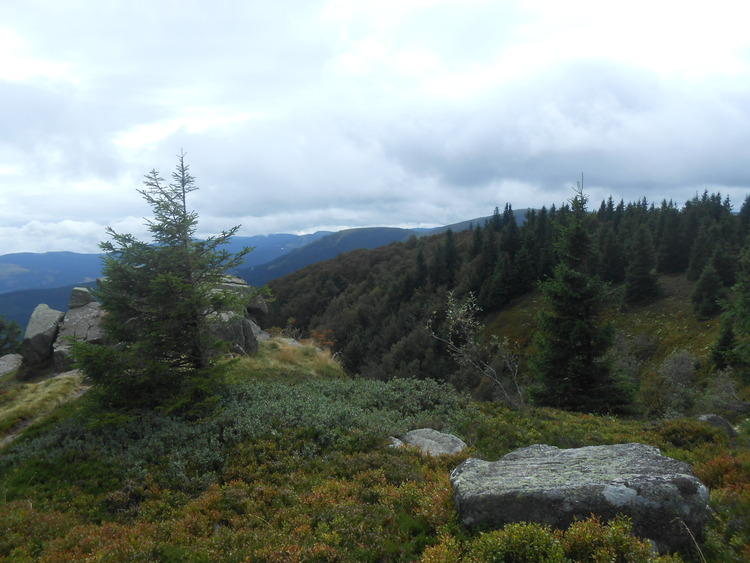 Vosges- le Tanet/ le Gazon du Faing
