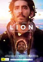 lion lion