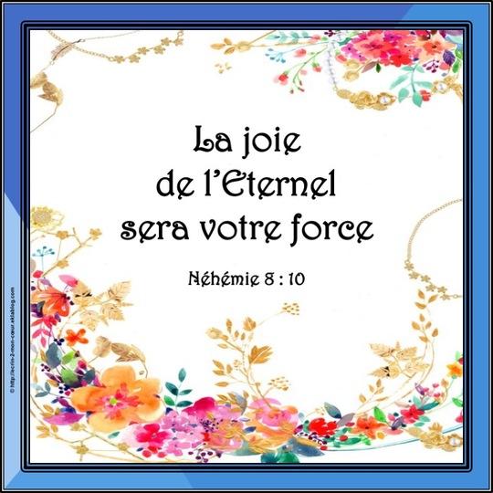 Hébreux 13 : 6