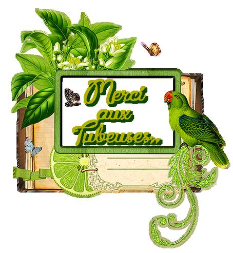 *Vert...comme verdure et fraîcheur...