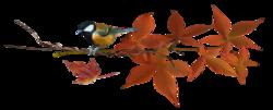 Tombent les feuilles mortes