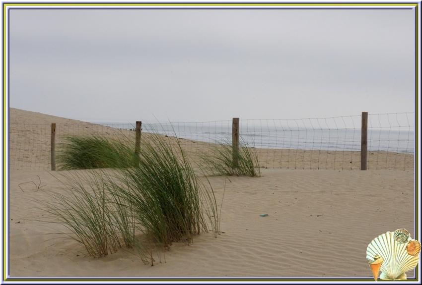 Entre St Trojan et Grand village ,la grande plage au mois de septembre 2013