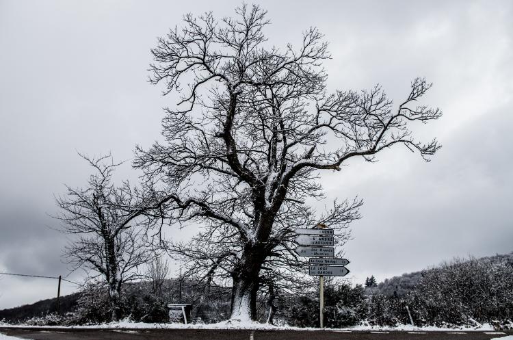 Balade hivernale #4, Arcon, janvier 2015