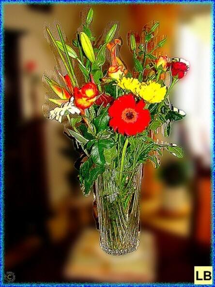 photos>fleurs