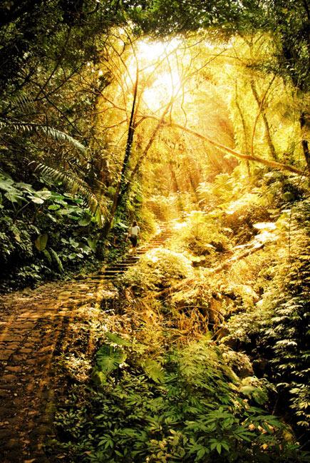 L'espace lumineux de la conscience d'éveil