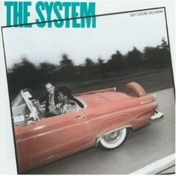 The System - Don't Disturb This Groove - Complete LP