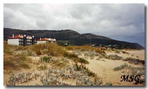 Priaia de Quiaios (Portugal)