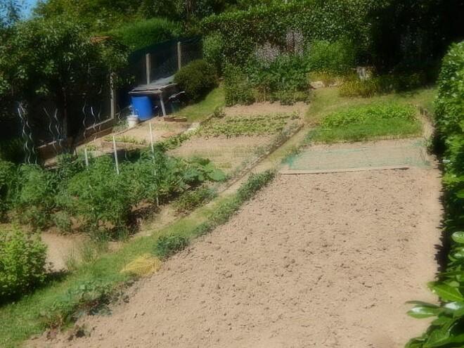 Veille de l'été , encore un petit tour de jardin