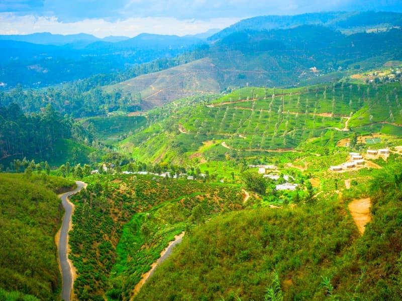 Le plaisir de la randonnée pédestre au Sri Lanka