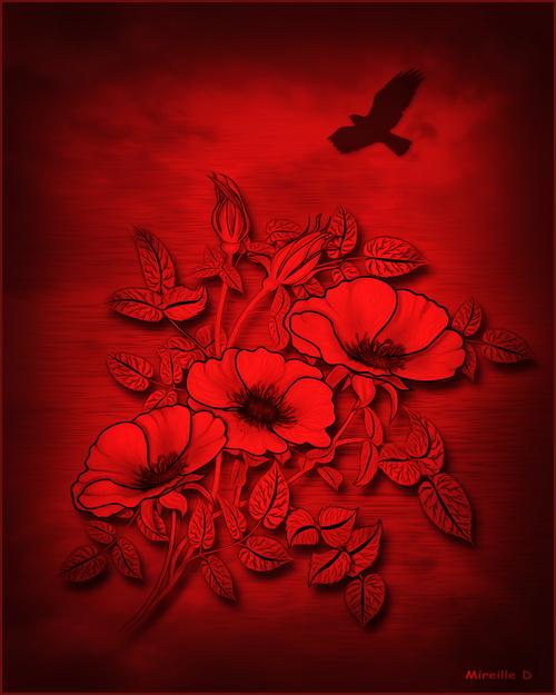 Design Fleuri Flamboyant