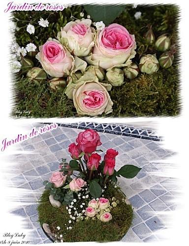 06 08 06 2010 jardin de roses (3)