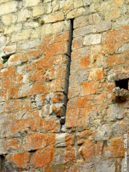 Montségur... L'âme des pierres
