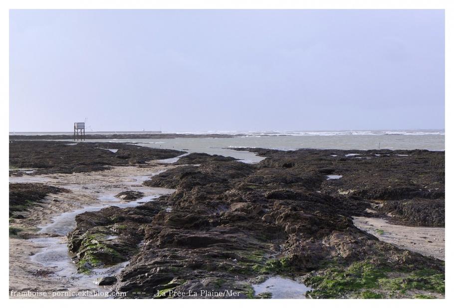 La Prée - La Plaine sur Mer