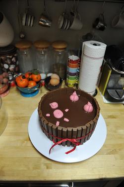 Gâteau : bain de cochons