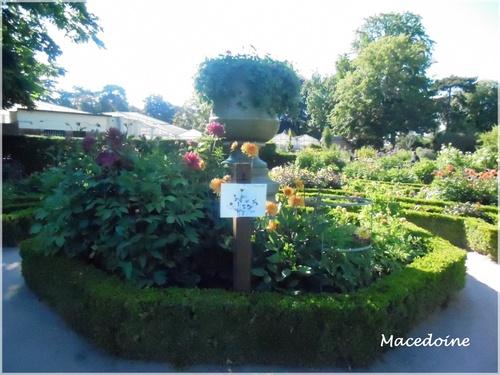 Le jardin des plantes à Rouen (3)