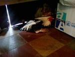 et si on se cuisinait du poulet
