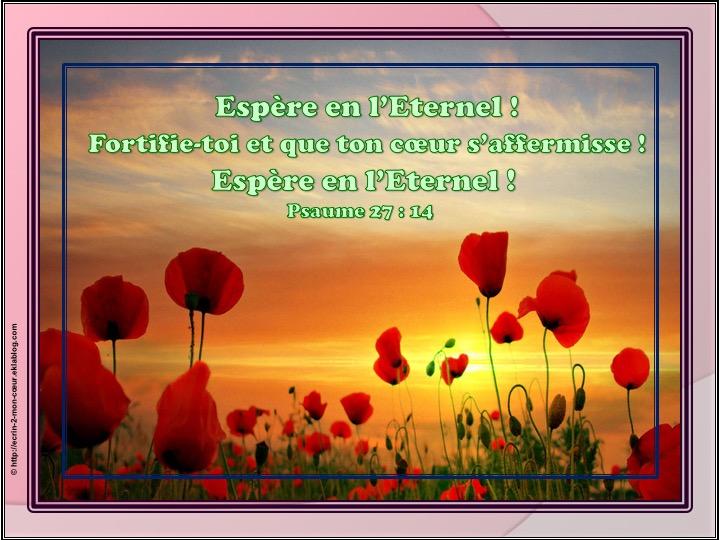 Espère en l'Eternel - Psaumes 27 : 14