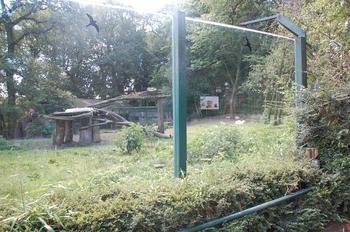 Zoo Duisburg 2012 688