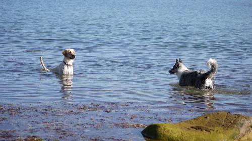 Dernier jour a la mer :)