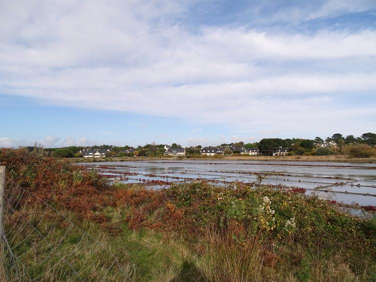 Sur le sentier côtier de Carnac à la Trinité - Les marais salants de Trévillen