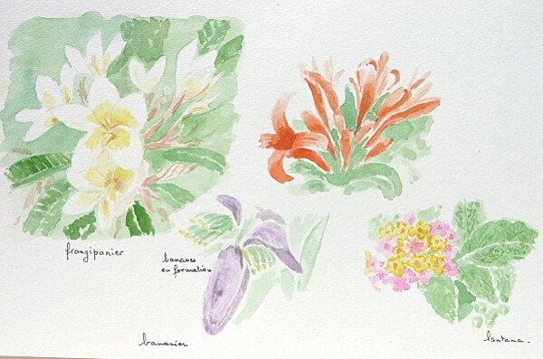 46 fleurs