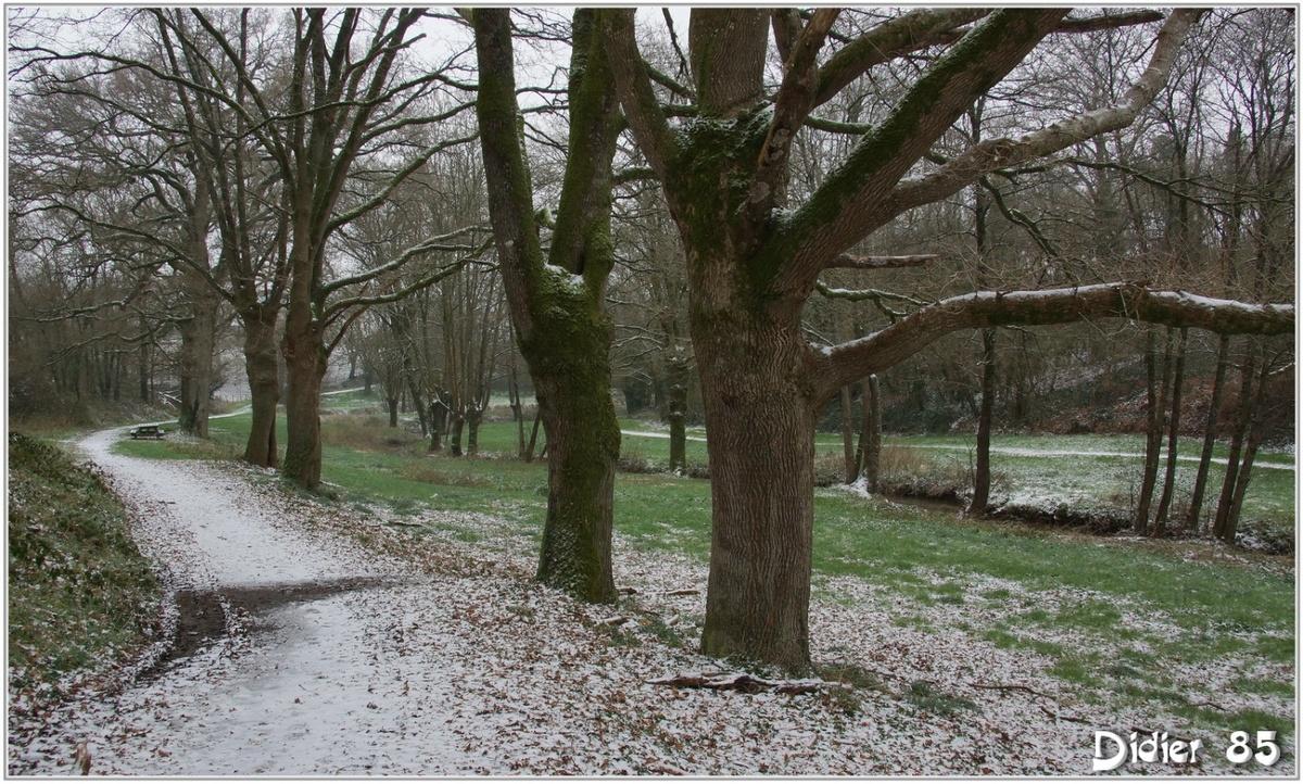 (85) Vendée - La Chaize le Vicomte (10) - Vallée Verte / Sous la neige