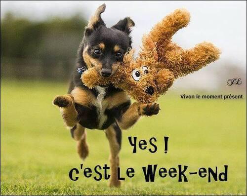 bon vendredi et a lundi .....