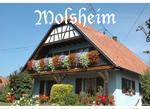Molsheim : Bas-Rhin (67 )