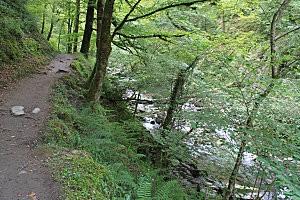 sentier d'Holzarte -7-