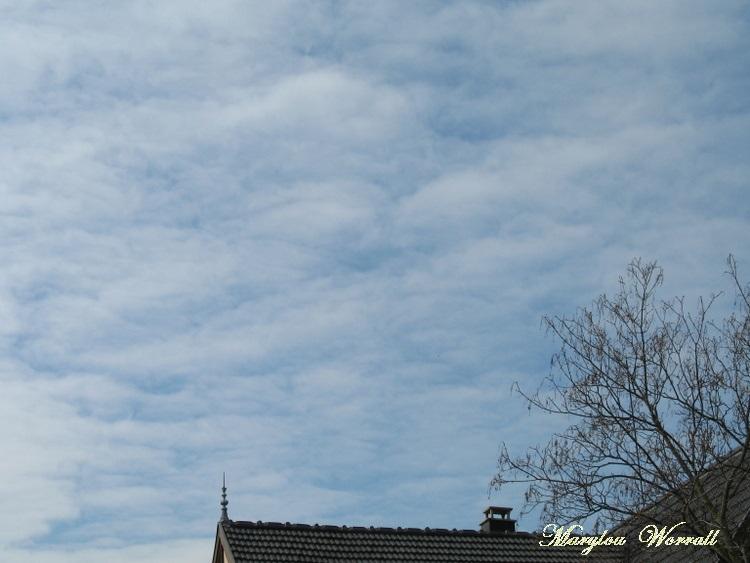 Ciel d'Alsace 210