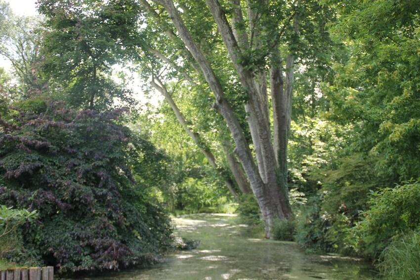 Les jardins de Berville 3