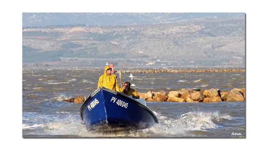 Frisquet le retour de pêche (Barcares - décembre 2013)