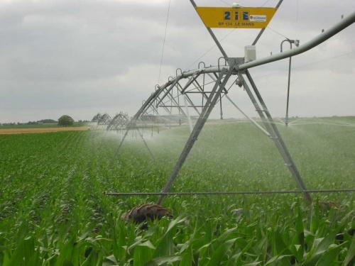 Irrigation dans la plaine du Sud-Vendée.