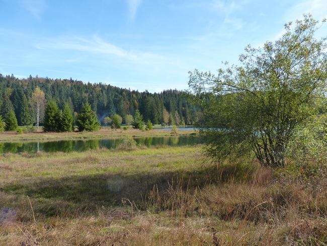 Lac Genin (Ain)