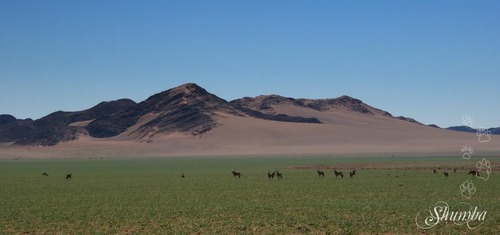 Namtib Biosphere Reserve