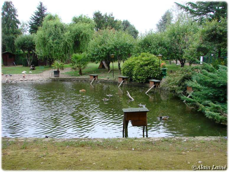 Parc_ornithologique_17Juil09_10