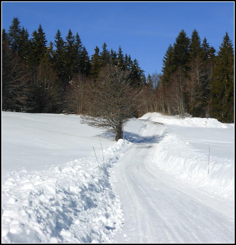 Petite sortie neige en Haut-Valromey