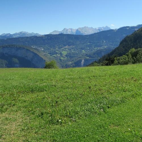 Bellecombe en Bauges (Savoie)