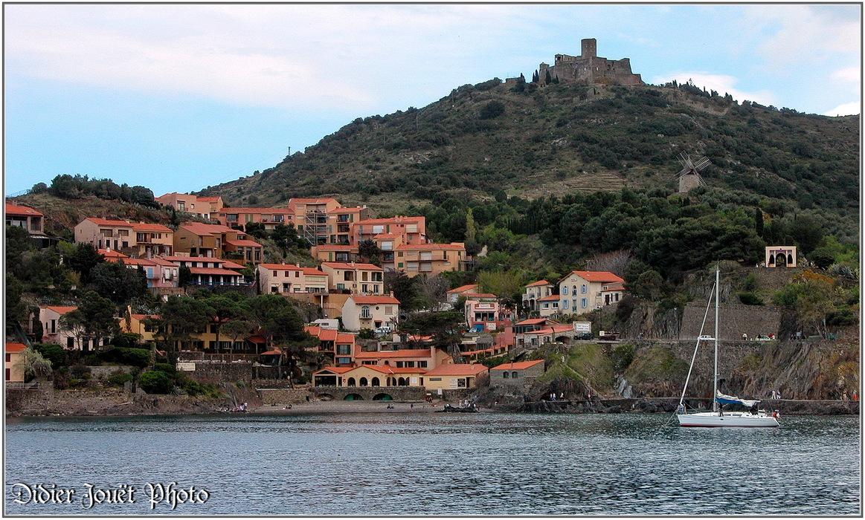 66 - Pyrénées Orientales / Collioure