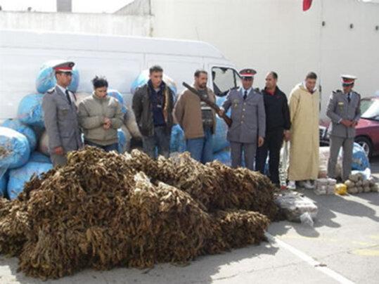 Quelque 8,5 tonnes de kif granulé et de 300 kg de kif en tiges ont été saisie par la Gendarmerie lors des opérations de perquisitions menées mardi et mercredi au douar Haouta, Caïdat Tanakoub, Provinc