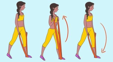 3-Gymnastique Des Organes Bande élastique