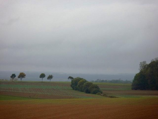 Moselle en automne 27 Marc de Metz 16 10 2012
